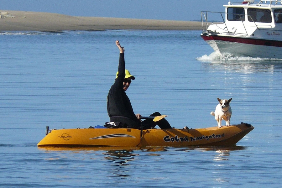 Best Dog Friendly Kayaks and How to Get Started Today