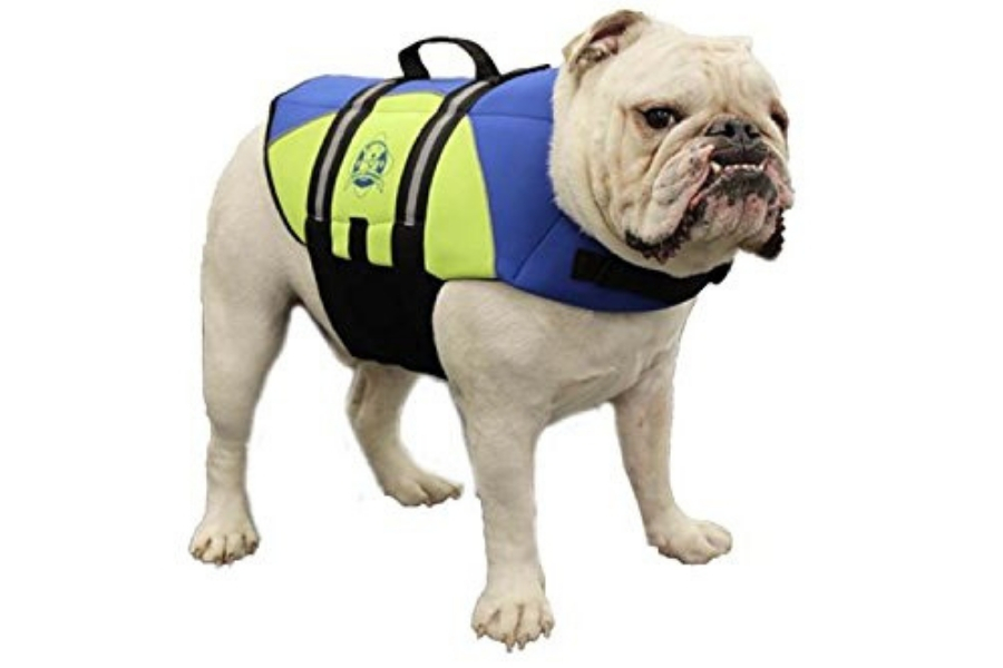 Paws Aboard BY1400 Neoprene Doggy Life Jacket